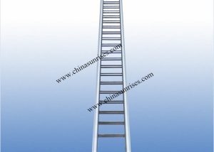 Stainless Steel Inclinde Ladder