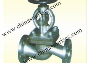 Stainless Steel Stop Check Valve